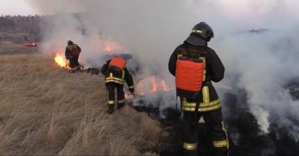 В Иркутской области проведут контролируемые профилактические отжиги сухой растительности