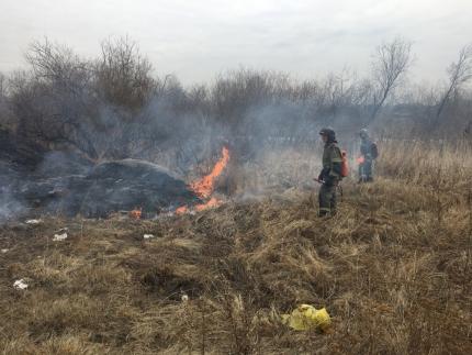 В центральных и южных районах Иркутской области вводится особый противопожарный режим