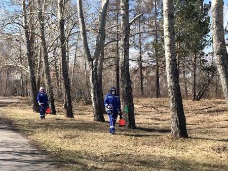 В Иркутске началась противоклещевая обработка территорий общего пользования