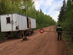 Режим чрезвычайной ситуации введен в лесах регионального характера Иркутской области