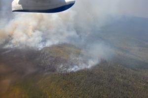 В Иркутской области из-за пожаров отложено открытие сезона охоты