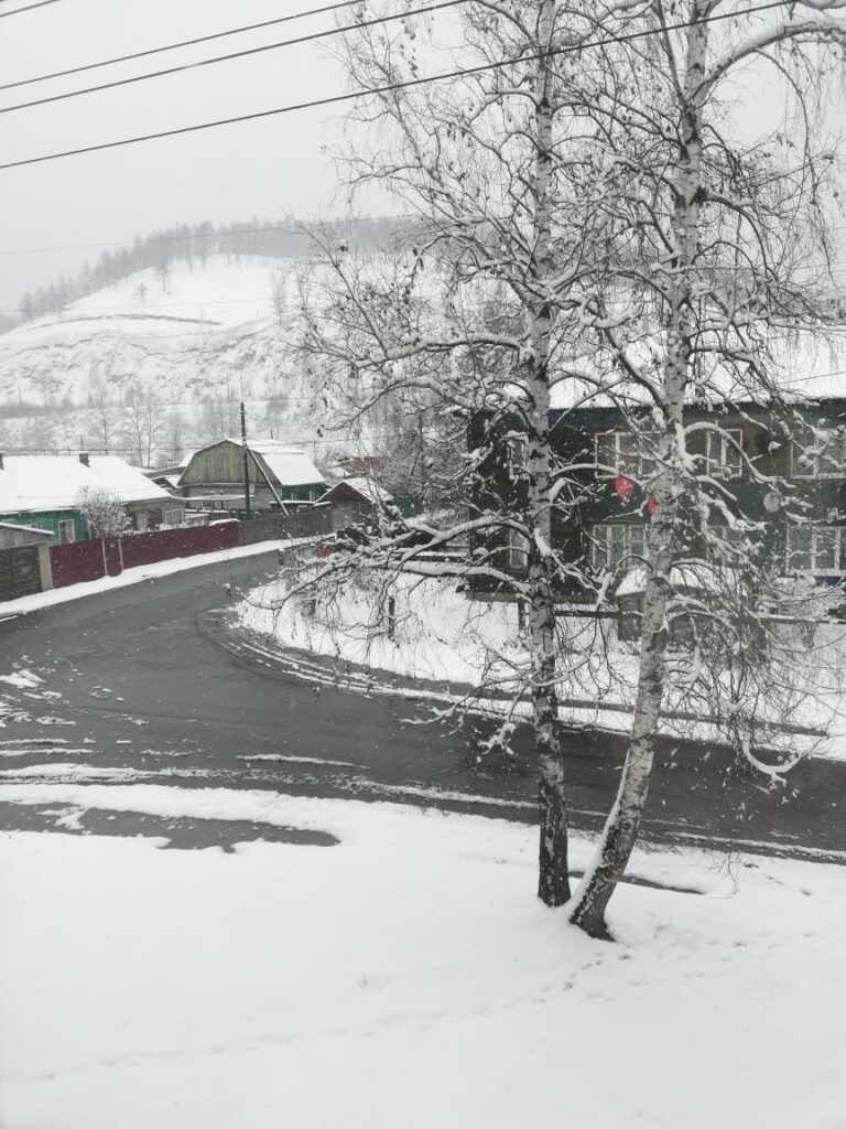 МЧС: Усиление ветра до 23 м/с прогнозируется в Иркутской области 5 мая