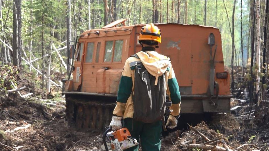 В Иркутской области увеличивается количество лесных пожаров